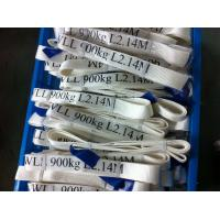 China Safety Factor 5 To 1 Endless Webbing Sling 900kg White Color OEM Available factory