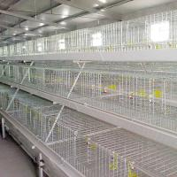China Silver White Broiler Chicken Cage High Temperature Resistant With Feeding / EC System on sale