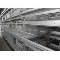 China Industrial Broiler House Equipment Wire Chicken Cages ISO9001 Approved factory