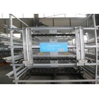 China Galvanized A Type Baby Chick Cage Advanced Automatic Operation System factory