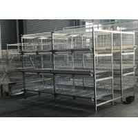 China Anti - Corrosion Broiler Chicken Cage Farming Epidemic Disease Easy Controlled factory