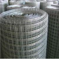"""China factory direct export 2""""x2"""" Galvnaized Welded wire mesh,1""""x1"""" welded wire mesh"""