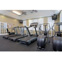 Buy cheap Use Workout Product Boxing Equipment from Wholesalers