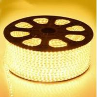 China 220V High Voltage LED Flexiable Strips SMD5050 2835 3528 RGB multicolor IP67 22LM factory