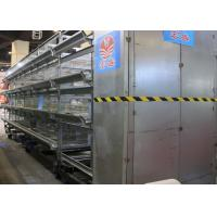China High Efficiency Automatic Chicken Cage H Type  Free Layout Design factory