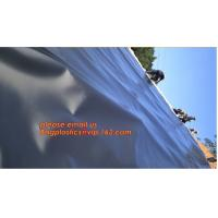 China eco-friendly hdpe geomembrane liner geomembrane price,eco-friendly hdpe geomembrane liner waterproofing membranes BAGEAS factory