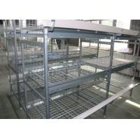 China High Capacity H Type Poultry Cage Low Noise ISO9001 Certification factory