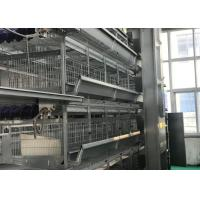 China High Strenghth Automatic Poultry Feeder System Health Long Service Life factory