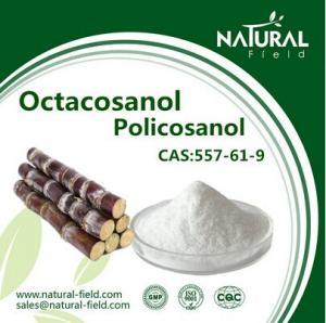 China China Supplier Policosanol, Sugarcane wax extract Octacosanol factory