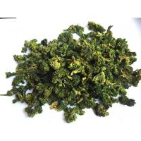 China Dehydrated Broccoli Pure Natural Nutritional Supplement, Organic factory