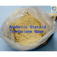 Buy cheap Trenbolone Base Powder Fat Loss 98% Cutting Cycle Steroids Bodybuilding from Wholesalers
