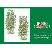 "Buy cheap Heavy Duty Metal Square Tomato Cages With 8"" Square Openings from Wholesalers"