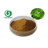 China Medical Food Grade Epimedium Extract Powder Flavone 5% For Enhancing Male Sexuality factory