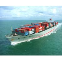 China Shipping Agency Services to Brazil,Argentina,Uruguay factory