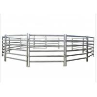 China Metal Cattle Farm Equipment 1.6 * 1.8 Meters Hot Dip Galvanized Fence Panel on sale