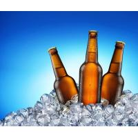 Industrial Beer Filling Machine , BGF32-10 2 In 1 Filling And Capping Machines