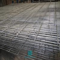 China Twin wire 6/5/6mm fencing mesh fence double wire galvanized welded wire mesh fence panel on sale