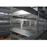 China Galvanized Industrial Open House Battery Cage System For Laying Hens factory
