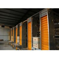 China High Technology Automatic Egg Collection System 15-20 Years Lifespan factory