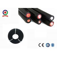 China Halogen Free Twin Core Solar Cable , Dual Wall Insulation 4mm Twin Core Wire on sale