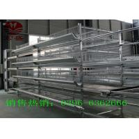 China Conveyor Belt  Automatic Manure Removal System Convenience ISO9001 Approved factory
