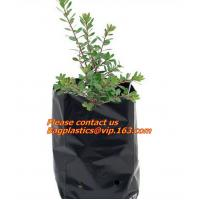 China Poly Planter, Grow Bag, garden bags, grow bags, hanging plant bags, planters, Plastic plan factory