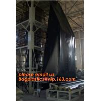 China 2mm HDPE reinforced polypropylene geomembrane for landfill,Geomembrane fish farming Pond Liner Hdpe Geomembrane BAGPLAST factory