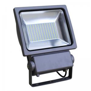 China High Brightness ip65 led basketball court light 100W Outdoor flood light (CE RoHS PSE LVD) factory