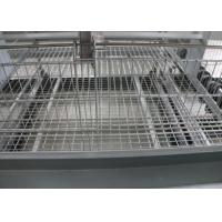 China Automatic Baby Chick Cage System 180 Birds Capacity 15-20 Years Lifespan factory