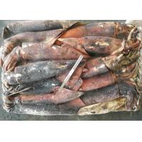 Buy cheap Whole Round Frozen Giant Squid from wholesalers