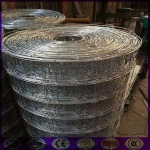 China Argentina Deer fence making machine factory