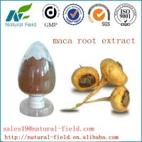 China Top quality maca extract factory