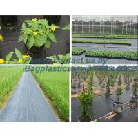 China Water management weeb control pavement preservation courtyard beautify anti insect anti mold seedbed protection vegetati factory