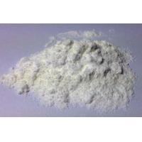 Buy cheap CAS 481-29-8 Epiandrosterone Prohormone Raw Powder For Bodybuilding from Wholesalers