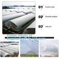 Quality 200 Micron Uv Resistant Film Greenhouse Perforated Mulch Agricultural Film Vegetable Planting for sale