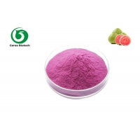 Buy cheap GMP Standard Natural Powdder Guava Fruit Juice Powder from wholesalers