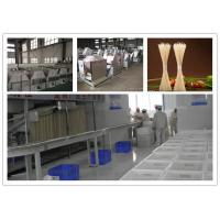 Buy cheap Vegetable Noodle Maker For Dried Stick , Fresh Noodle Production Line Make Drying Noodles from Wholesalers