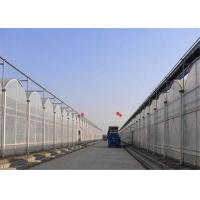 China Sound Insulation Polycarbonate Sheets Greenhouse Anti Fog Surface Design Free Samples on sale