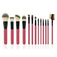 Eco Friendly Professional Cosmetic Makeup Brush Set / Pink Makeup Brushes
