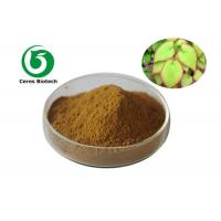 China Penis Strong Epimedium Extract Powder Icariin 40% Solvent Extraction Medical Grade factory
