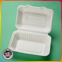 Quality White Color Biodegradable Bagasse Sugarcane Pulp 1000ml Box for sale