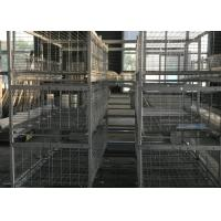 China H Type  Broiler Chicken Cage 180 Birds Capacity 1200×625×480 Mm For Chicken Farm factory