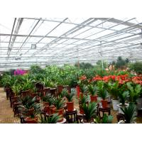 China Flower Exhibition Multi Span Greenhouse , High Output Polycarbonate Sheet Greenhouse on sale