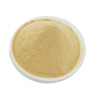 China High Tolerance 10g 100g Active Yeast Chemical Food Ingredients factory