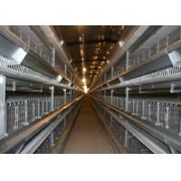 China 120 Birds Capacity Broiler Chicken Cage Corrosion Resistant For Poultry Farm factory
