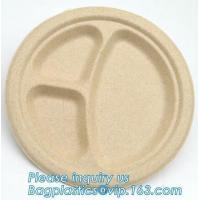 China biodegradable food tray for fruit or snack biodegradable corn starch disposable plastic food tray PLA Foamed Biodegradab factory