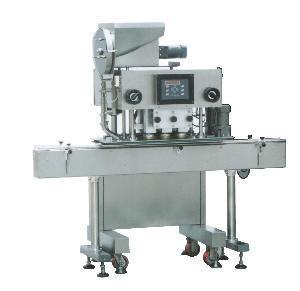 China Capping Machine (ZHG200) factory