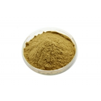 China Pharmaceutical Grade 20/1 Brassica Rapa Extract Powder factory