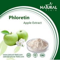 China Best Sells Product Phloretin, Free Samples Green Apple Extract, China Supplier Apple Extra factory