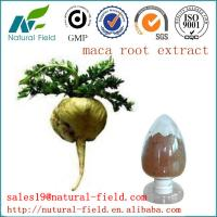 China Top quality maca extract with factory price factory